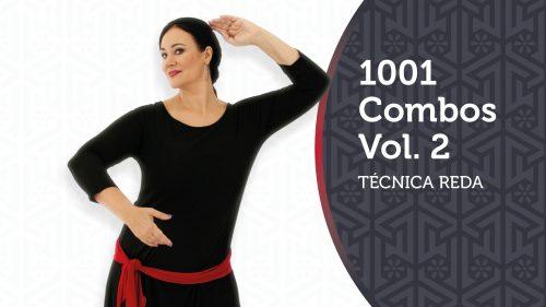 1001 Combos Vol.2 Thumbnail